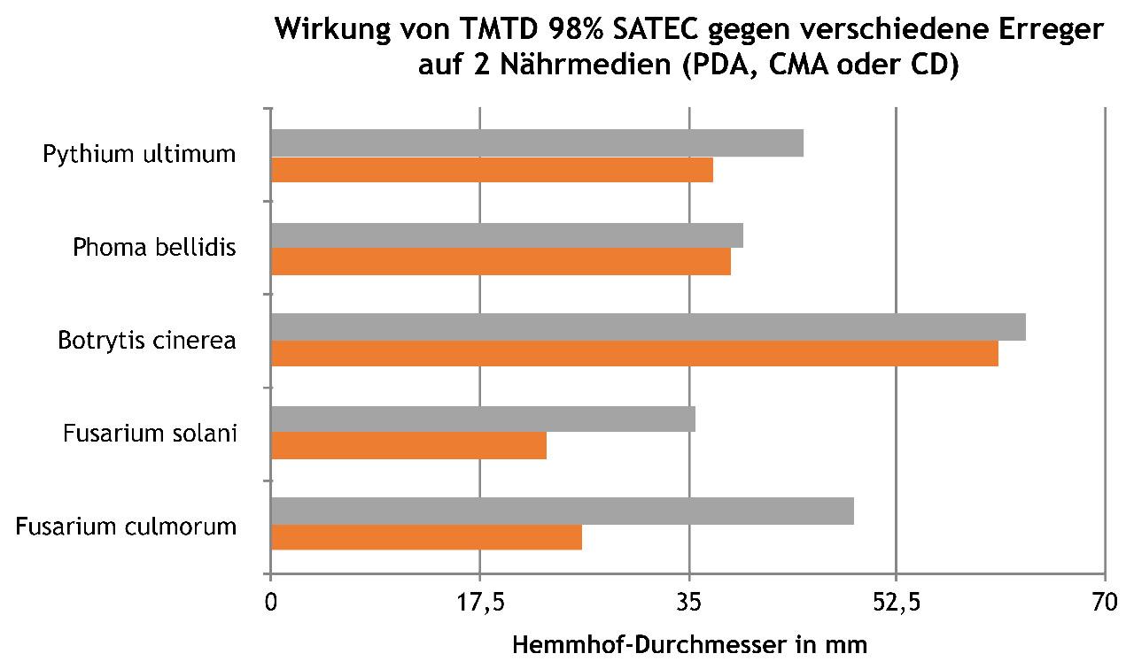 Wie wirkt die TMTD-Beizung